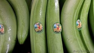 свежие бананы оптом - Изображение #2, Объявление #618597